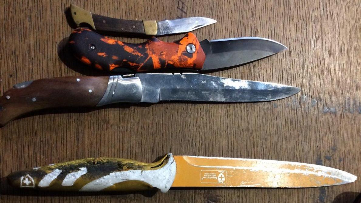 un retraité vient au tribunal de reims avec six couteaux - journal l