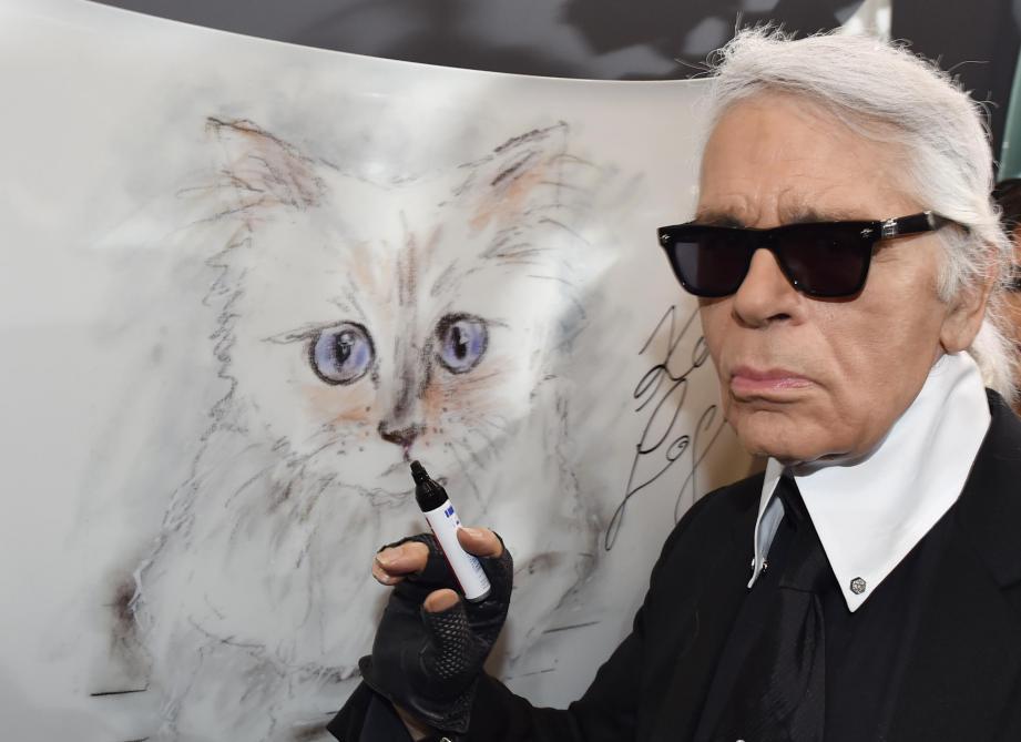 Photos de la chatte par derrière