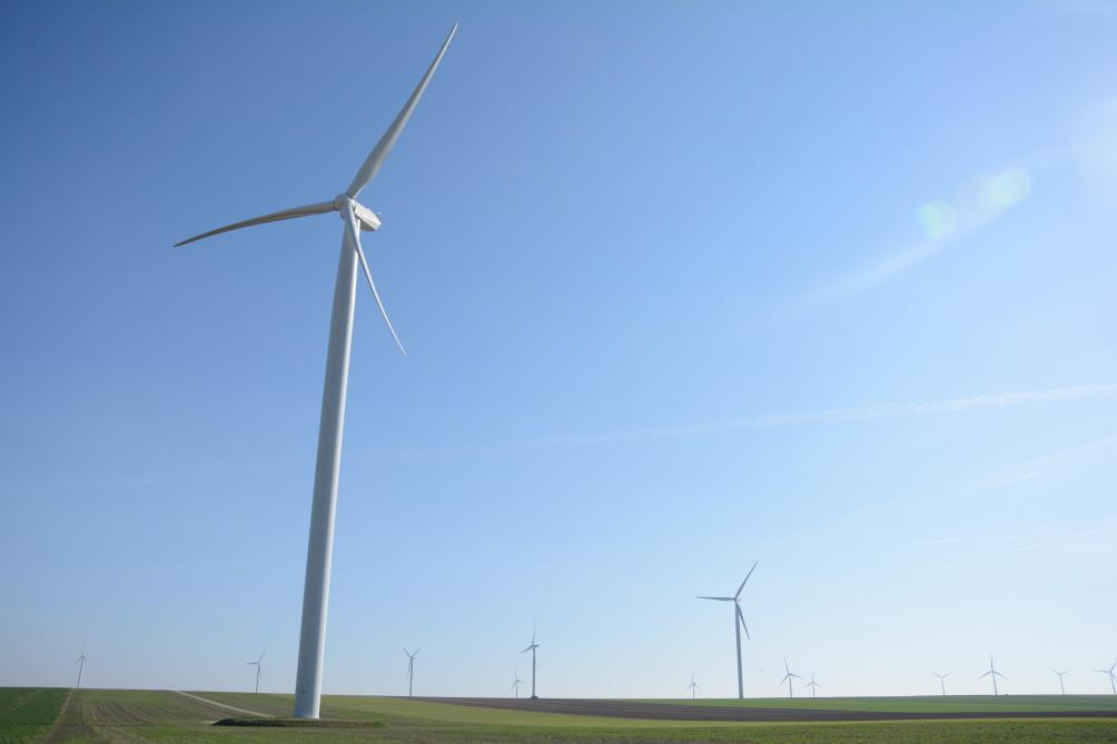 Les parcs éoliens visibles depuis le vignoble champenois sont nombreux comme ici celui près de Trécon.