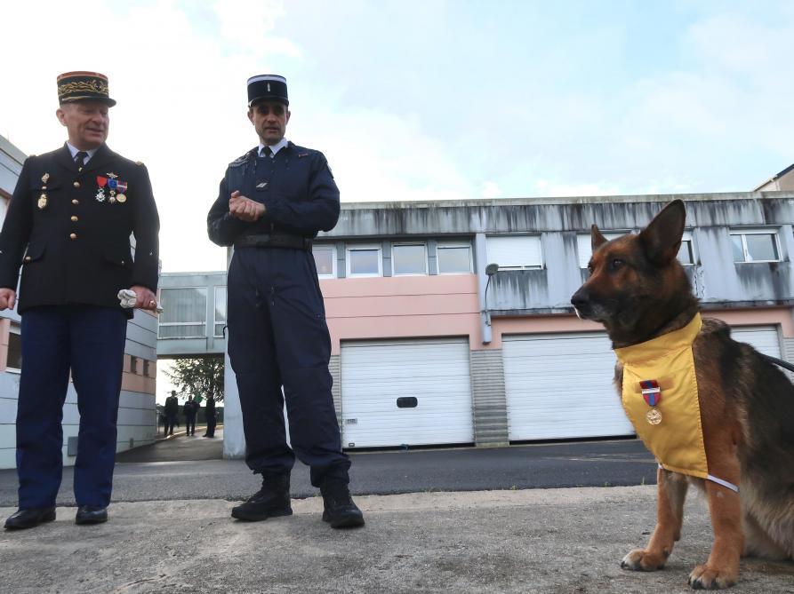 Le général de Lorgeril (à gauche) près du gendarme Vincent, a remis pour la première fois de sa carrière une médaille à un chien gendarme.