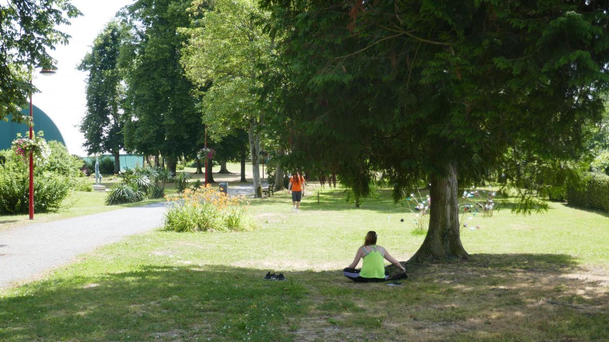 A Vouziers Un Jardin Des Sens Pourrait Venir Egayer Le Parc