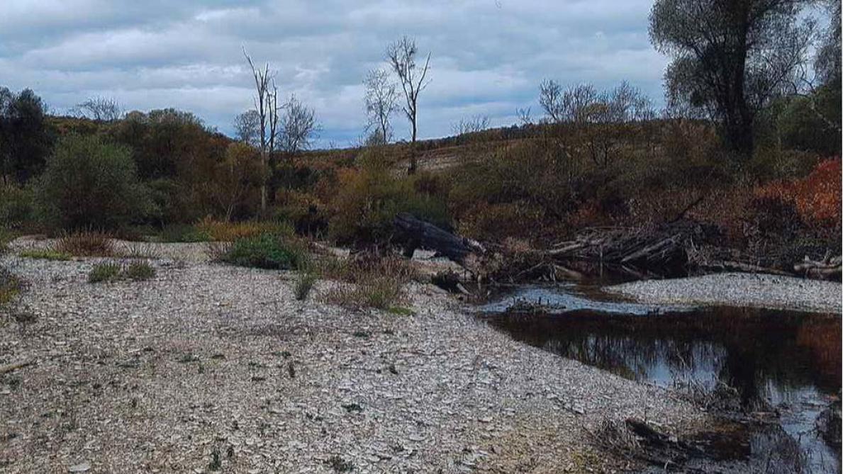Sécheresse : Plusieurs Cours D'eau Au Nord De L'Aube Sous