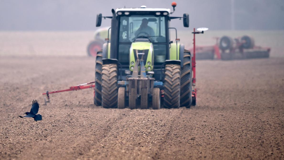 Agriculteur site de rencontre au Royaume-Uni