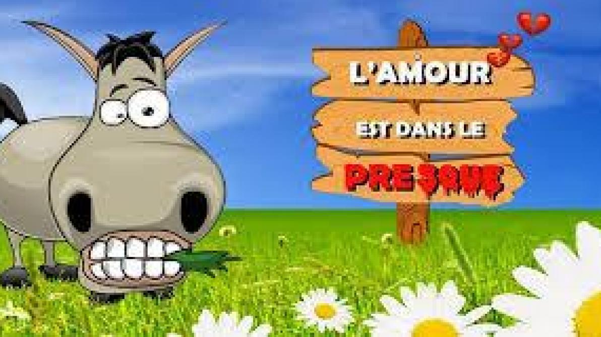 site de rencontres gratuit en belgique troyes