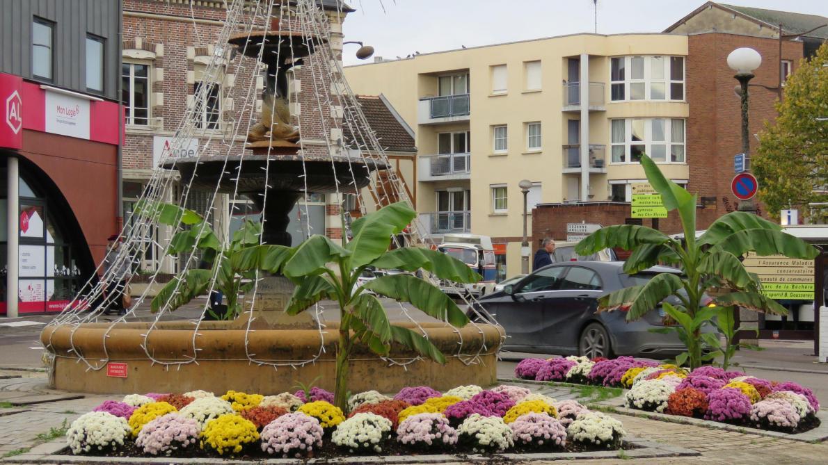 Romilly-sur-Seine : la ville est fleurie pour l'hiver - L'Est Eclair