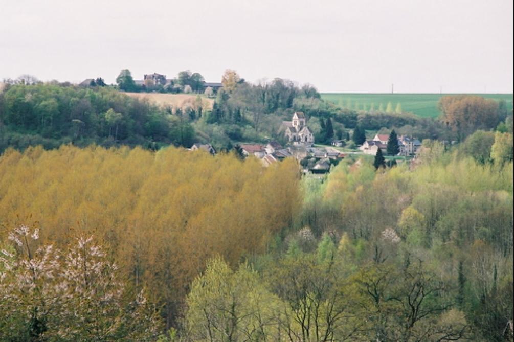 La forêt de Moulin-sous-Touvent, dans l'Oise.